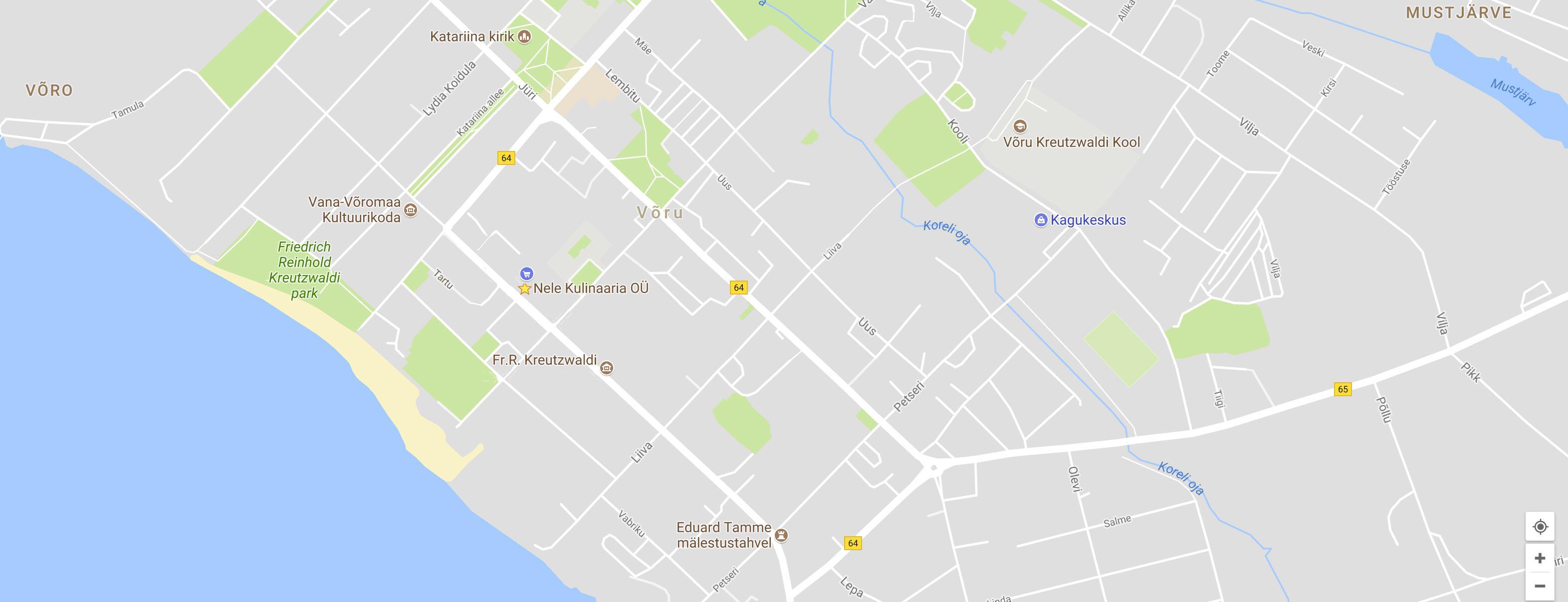 Google Map pilt1